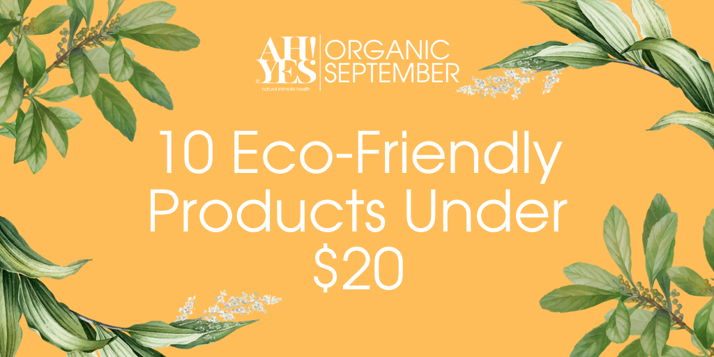 10 Eco-friendly products under $20